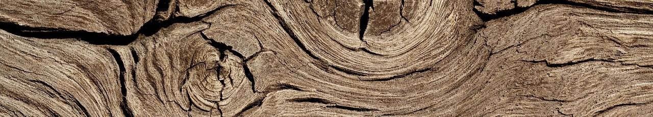 Element Holz München Bioenergie heilende Hände